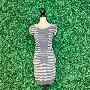 Fitted Stripe Dress
